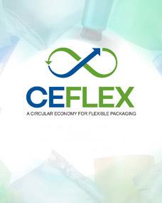 CEFLEX Presentation